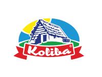 logo_morethanpub_partners_Koliba